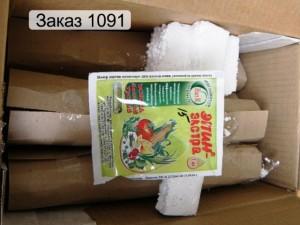 упаковка фуксий для пересылки почтой