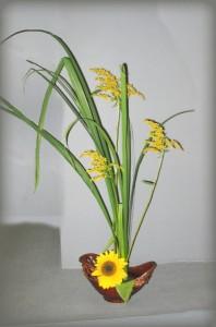 коппозиции флористические